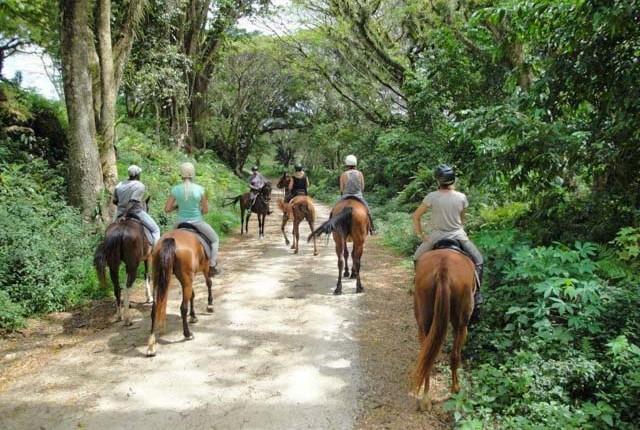 Rainforest trail ride in Vanuatu