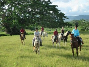 Horse riders at Bellvue ranch
