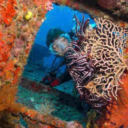 Diver in wreck, Port Vila, Vanuatu
