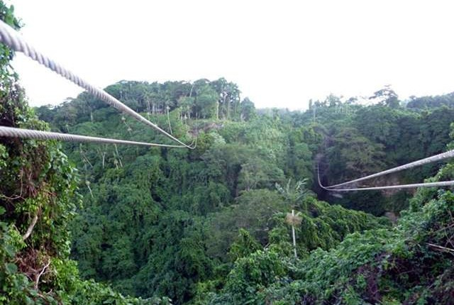 Amazing views from the Zipline in Port Vila.