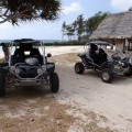 beach buggy on tour