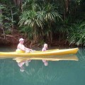 Lush tropical kayaking experience