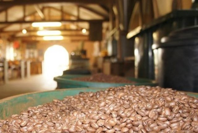 Roasted coffee beans at Tanna coffee factory, Port Vila, Vanuatu