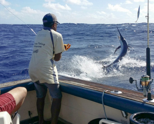 game fishing for marlin in Port Vila, Vanuatu