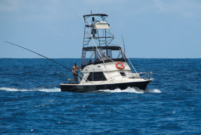 Game fishing full day charter tours and things to do in for Fishing boat games